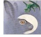 дракон и заяц